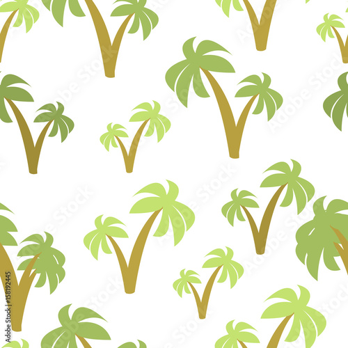 drzewa-palmowe-na-bialym-tle