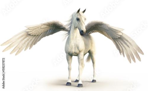 Obraz na płótnie Mythical white Pegasus posing on white isolated background