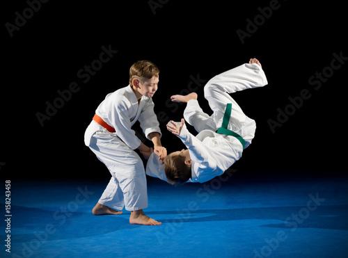 Fotografie, Obraz  Two boys martial arts fighters