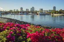 Beautiful Scene Around Rainbow Harbor