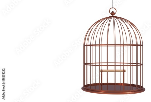 Fotografie, Obraz  Empty bird copper cage Isolated on white background, 3D rendering