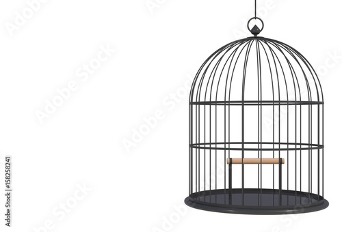 Obraz na plátně Empty bird black cage Isolated on white background, 3D rendering