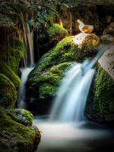 Bol Chantant: Bol Tibétain Dans La Nature. Forêt Et Cascade