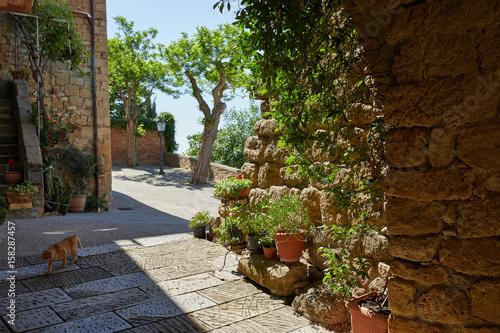 Naklejka premium Aleja w starym miasteczku, Tuscany Włochy