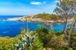 Agave plant growing on coast and view of sea in Cala Portinatx bay, Ibiza island, Spain