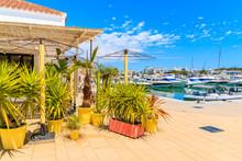 Cafe Decorated With Tropical Plants In Santa Eularia Sailing Marina On Ibiza Island, Spain
