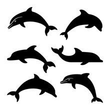 Dolphin Silhouettes Set