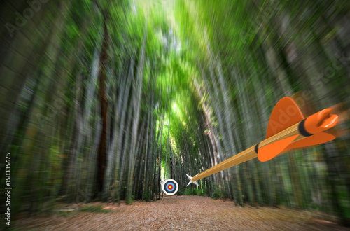In de dag Bamboo High speed arrow flying through blurred bamboo forest with archery target in focus, part photo, part 3D rendering