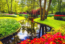 Blooming Garden Of Europe, Keu...