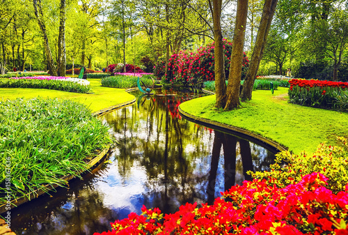 Cadres-photo bureau Vert chaux Blooming Garden of Europe, Keukenhof park. Netherlands.