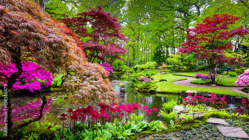 Foto op Aluminium Diepbruine Traditional Japanese Garden in The Hague.