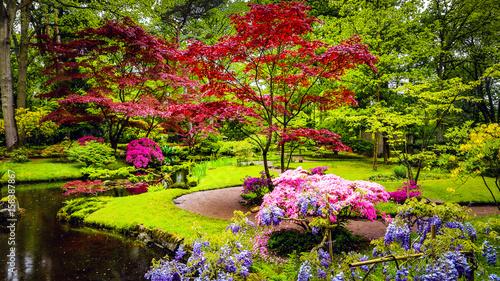 Papiers peints Jardin Traditional Japanese Garden in The Hague.