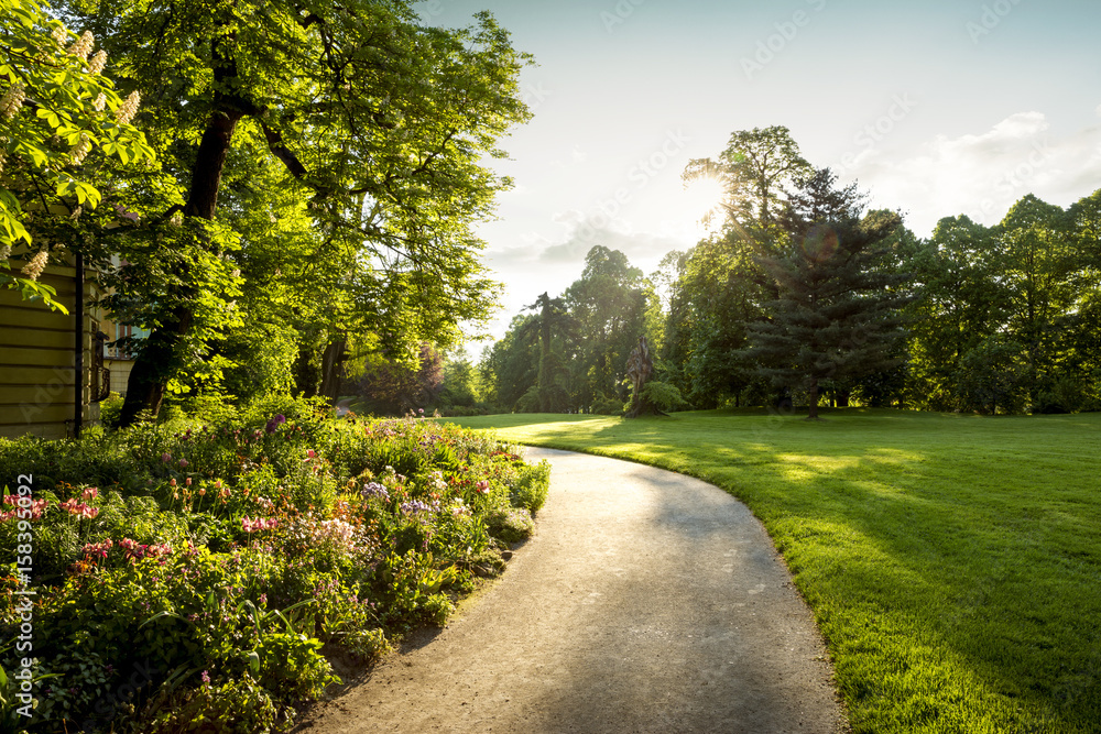 Fototapeta Panorama of city park with footpath and flowers