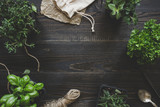 Fresh herbs on the dark wooden table, top view. Rustic background with copy space
