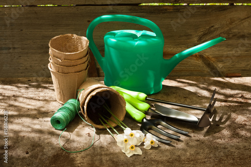 Fototapeta Garden Sets: Watering Can, Peat Pots, Fork, Scoop, Hoe, Roll Rope And Flowers Narcissus In Sunny Day On Old Wooden Gray Board. obraz