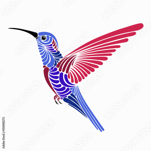 hummingbird vector illustration design buy this stock vector and