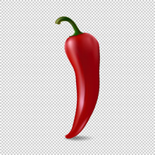 Realistic Red Chilli Pepper Icon Isolated On Transparent Background. Design Template Of Food Closeup In Vector.