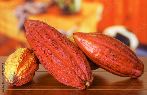 Close up of a fresh cocoa pods over a wooden table Canvas Print