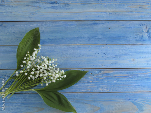 Staande foto Lelietje van dalen Lilies of the valley on a blue wooden background.