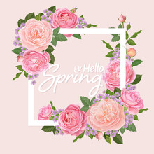 Decorative Vintage Pink Roses And Bud With Leaves In White Frame. Vector Set Of Blooming Flower For Your Design. Adornment For Wedding Invitations And Greeting Card.