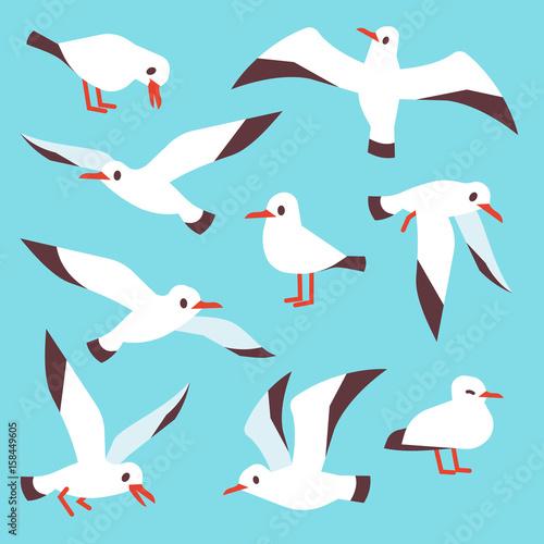 Cartoon atlantic seabird, seagulls flying in blue sky vector set Wallpaper Mural