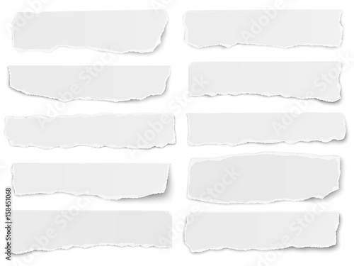 Cuadros en Lienzo Set of elongated torn paper fragments isolated on white background