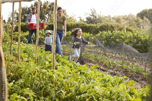 Family Harvesting Produce From Allotment Together Canvas Print