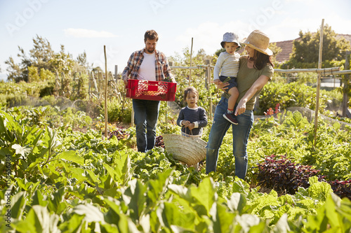 Family Harvesting Produce From Allotment Together Wallpaper Mural