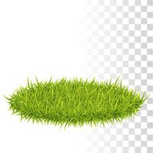 Oval Carpet Of Grass