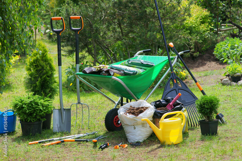 Fototapeta Work in the garden - planting plants obraz