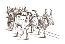 Hand Drawn Sketch Of Bullock Cart In Vector Illustration.