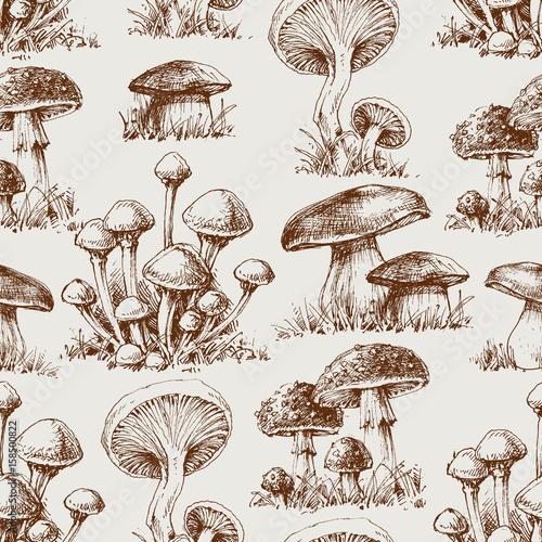 Fototapeta Mushroom seamless pattern obraz