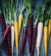Heritage Carrots, Overhead View