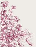 Kwiaty maku na rysunku od strony drogi. Projekt tła lato - 158505269