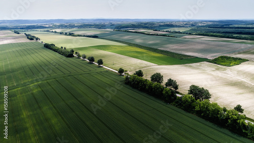 Deurstickers Olijf Aerial view landscape from a hungarian country