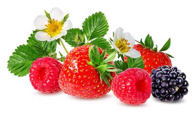 Panel Szklany Owoce strawberry,raspberry,blackberry isolated on white