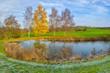 Ein Teich mit Birken im Herbst