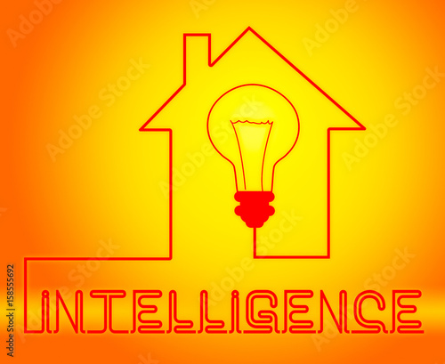 Intelligence Light Represents Intellectual Capacity And Acumen Wallpaper Mural
