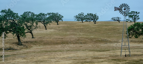 Photo sur Aluminium Oliviers Windmill on a dry field