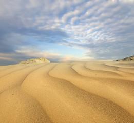 FototapetaSand dunes