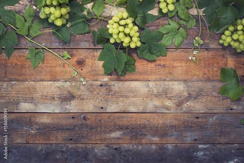 Fototapeta Wine grapes background obraz