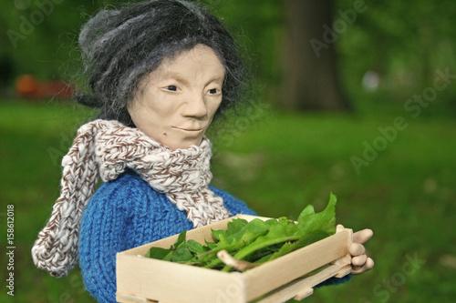 Fotografía  Mann trägt eine Kiste mit Grünzeug durch den Wald