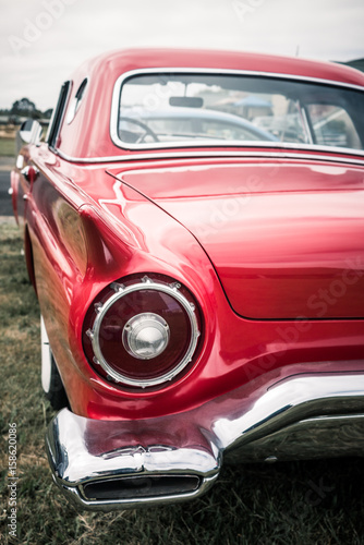 фотография  red thunderbird