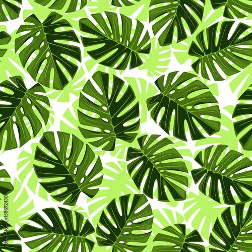 wzor-monstera-i-jasno-zielone-tlo