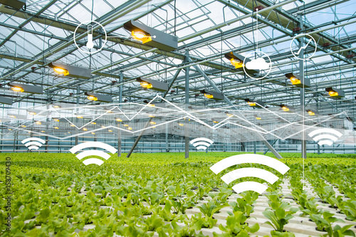 Fotografía  Internet of things in agriculture