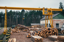 Wood Logging, Sorting, Transpo...