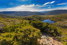 Wombat Pool Surrounded By Green Mountains At Cradle Mountain, Lake St Clair National Park In Tasmania, Australia.