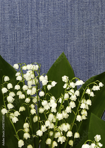 Poster Muguet de mai Flowers lily of the valley on a jeans background. . Place for the text. For design. View from above. Floral background. Flower composition. Nature.
