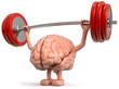 3d Gehirn als Gewichtheber