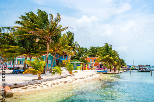 Caye Caulker Colors Wallpaper Mural